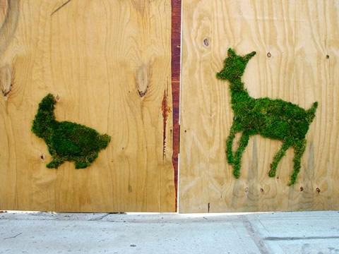 I graffiti 'green' di Edina Tokodi