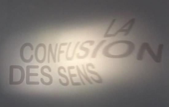 La Confusion Des Senses