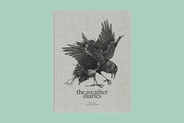 theweatherdiaries_01