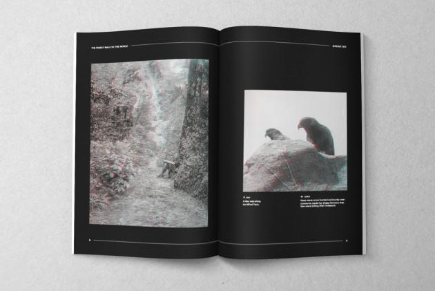 brewster_magazine_3