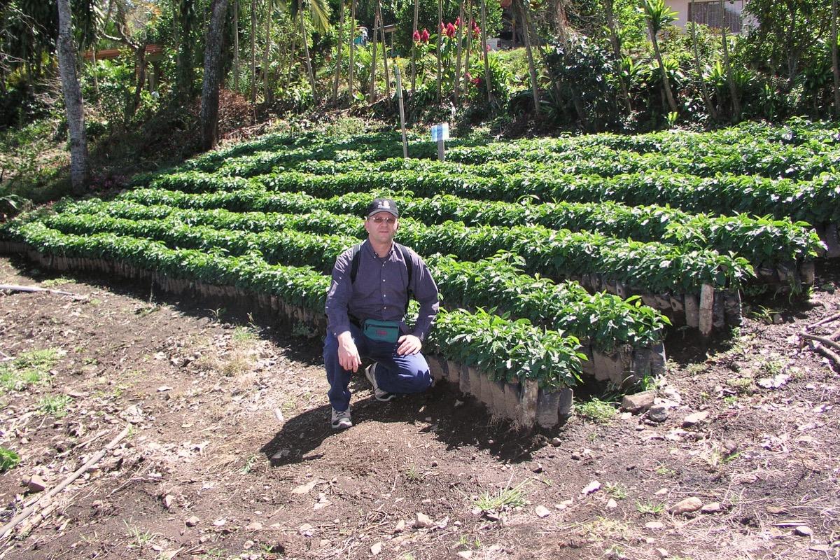 Leo coffee nursery Panama 2009