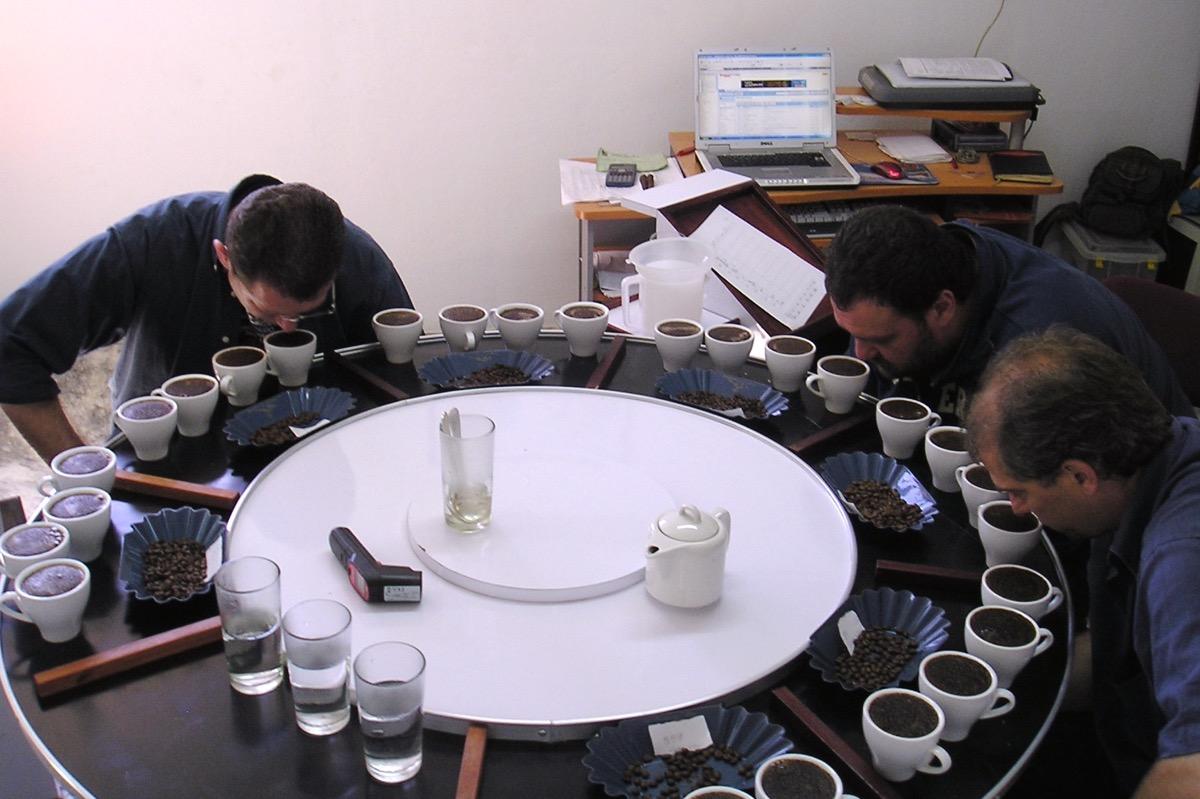 Repubblica Dominicana 2008 coffee cup tasting
