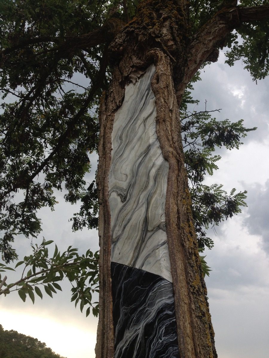 """Mirko Canesi, """"F/R"""", intervento su albero colpito da fulmine, muro a gesso dipinto con effetto marmo nella cavità di un albero, Madeinfilandia, Toscana, 2014"""