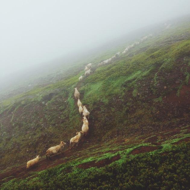 viaggio_in_islanda_enei_12