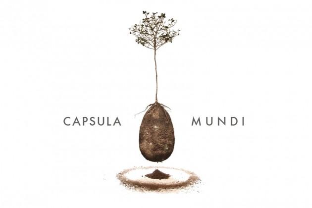capsula_mundi_3