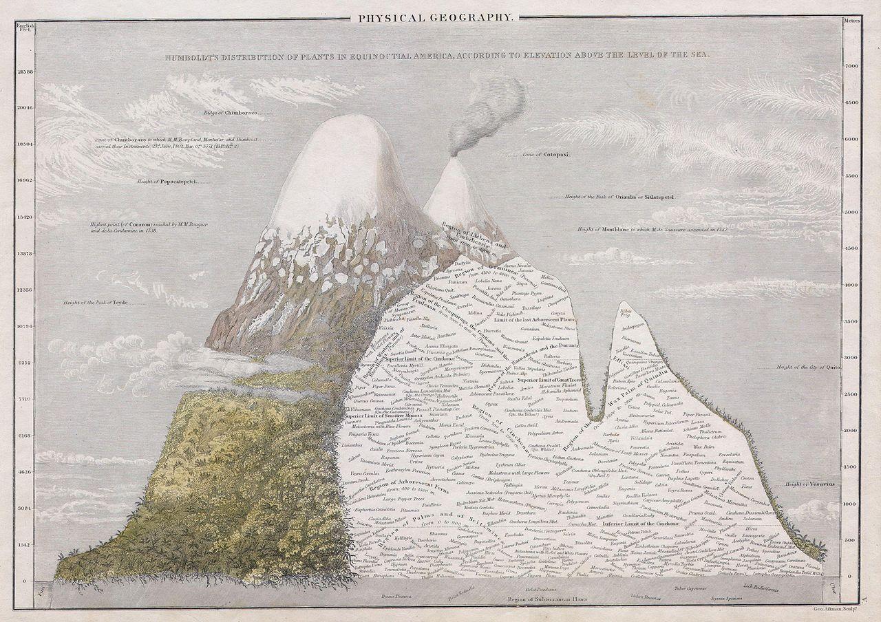"""George Aikman, """"Physical Geography. Humboldt's Distribution of Plants in Equinoctial America, According to Elevation Above the Level of the Sea"""", (una mappa del 1839 che indica la diffusione dei vari tipi di piante, in America, in base all'altitudine)"""