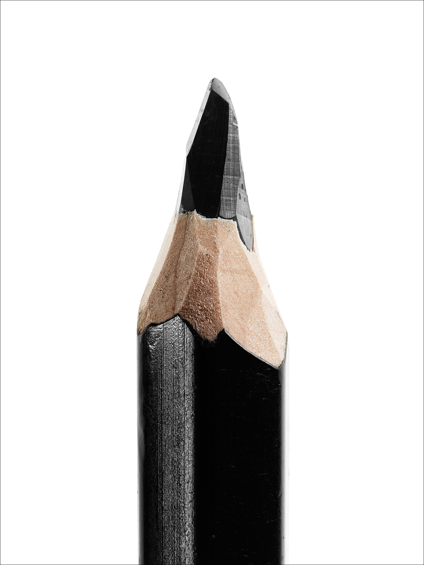 la matita di Posy Simmonds (dettaglio)