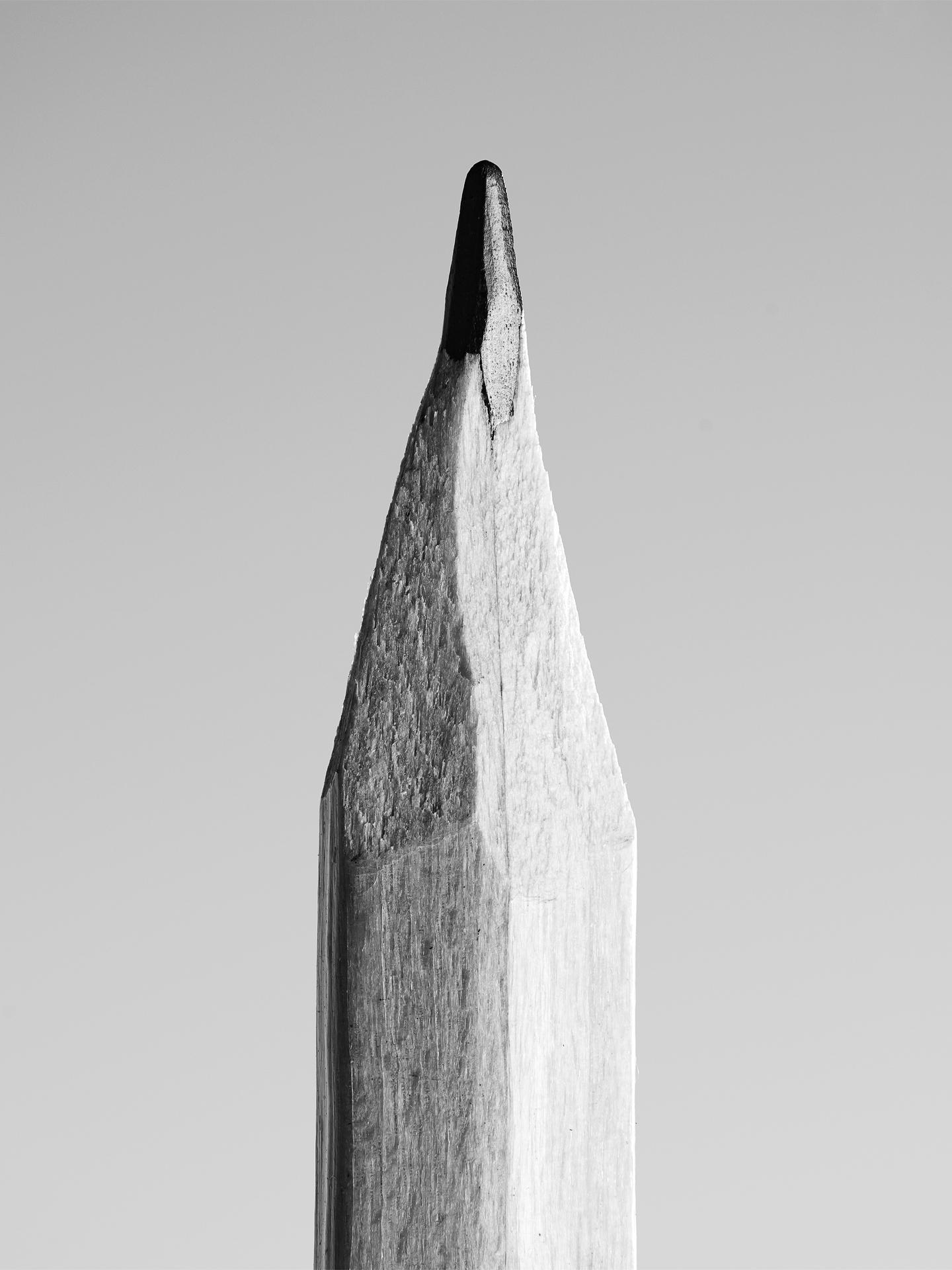la matita di Stephen Fry (dettaglio)