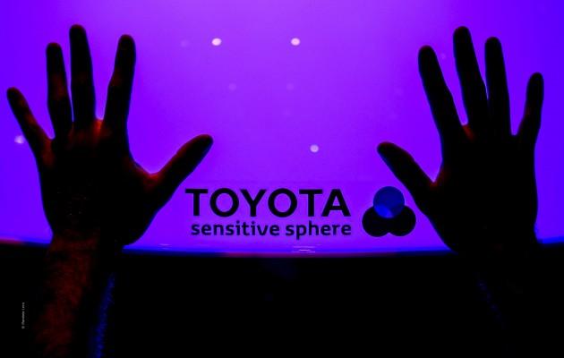 ToyotaUmbriaJazz©F.LeraPh.-0227