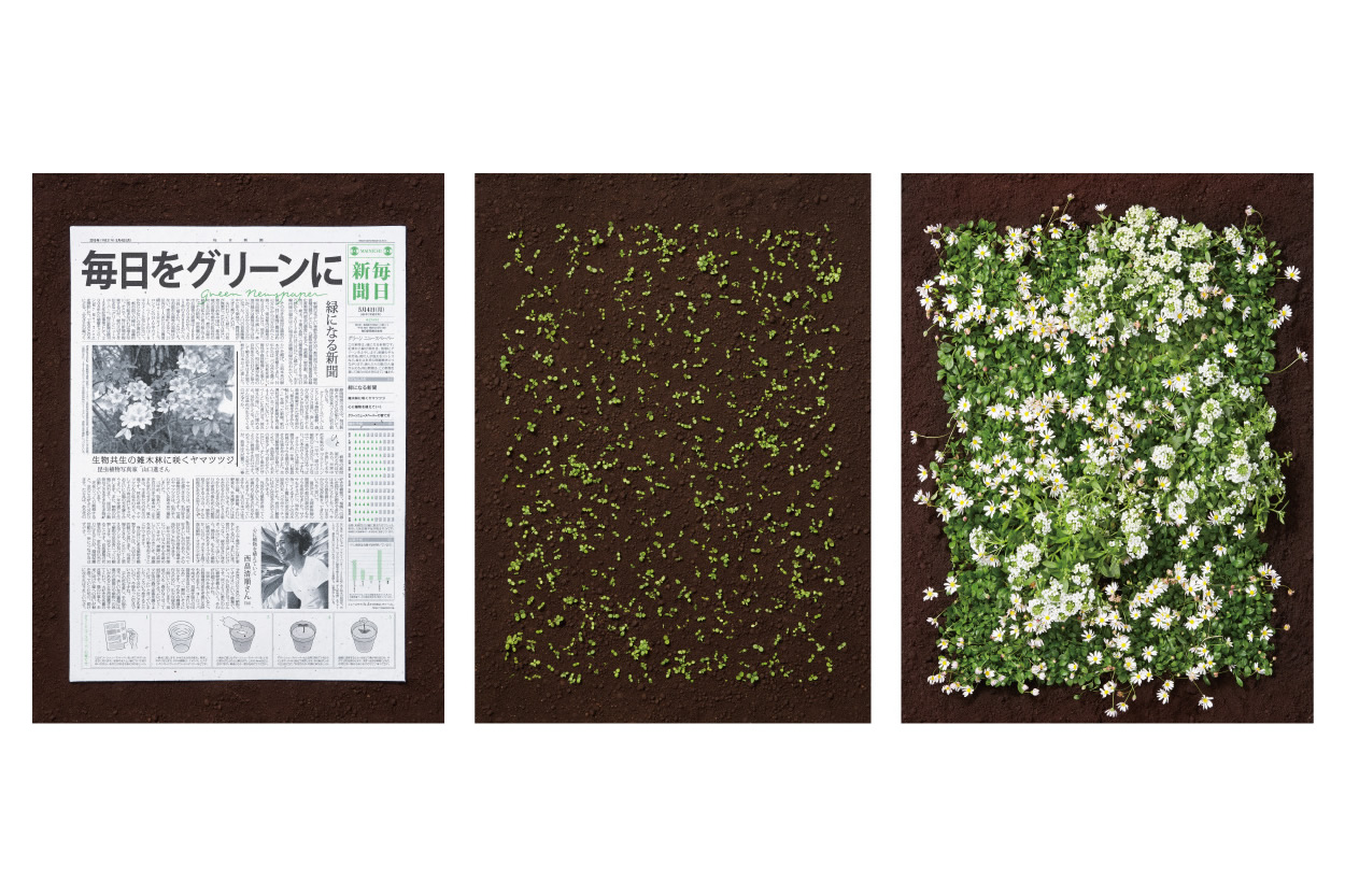 the_green_newspaper_2