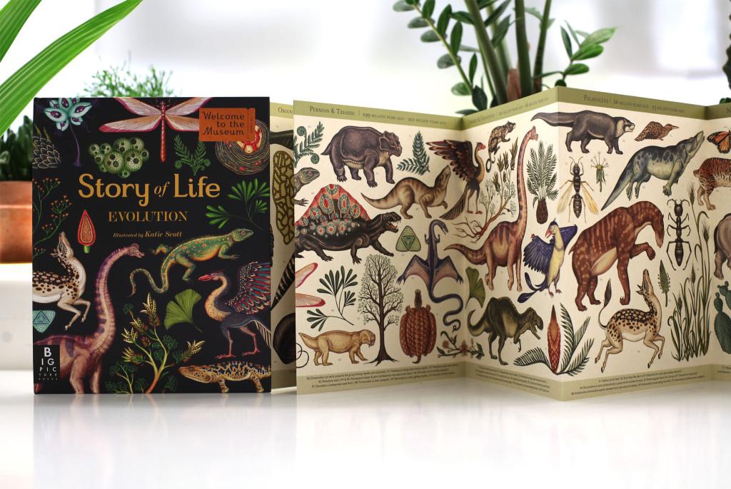 """Story of life: Evolution"", di Katie Scott, Big Picture Press 2015"