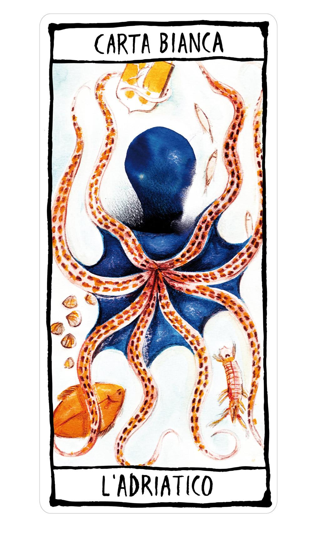 la carta bianca dell'Adriatico, illustrata da Francesca Ballarini per Enologica 2015