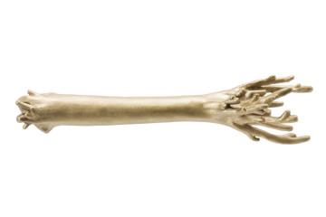 corallo ottone