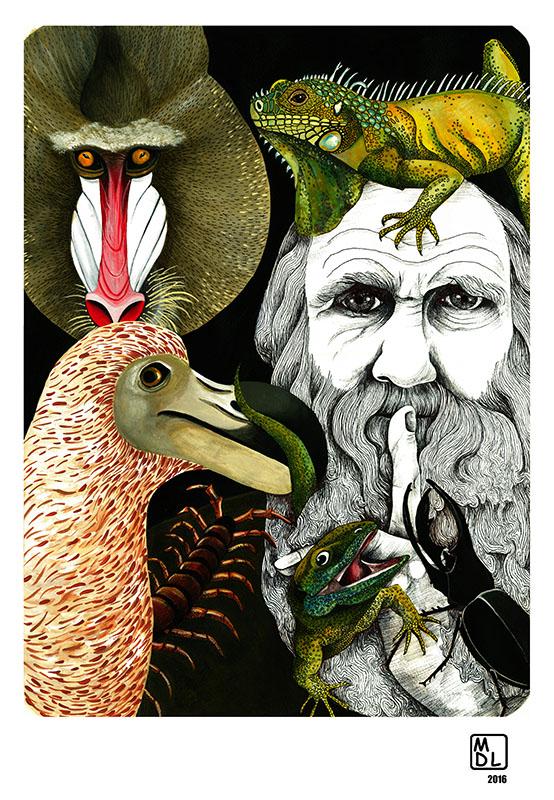 """Michela Di Lanzo, """"Darwin"""""""