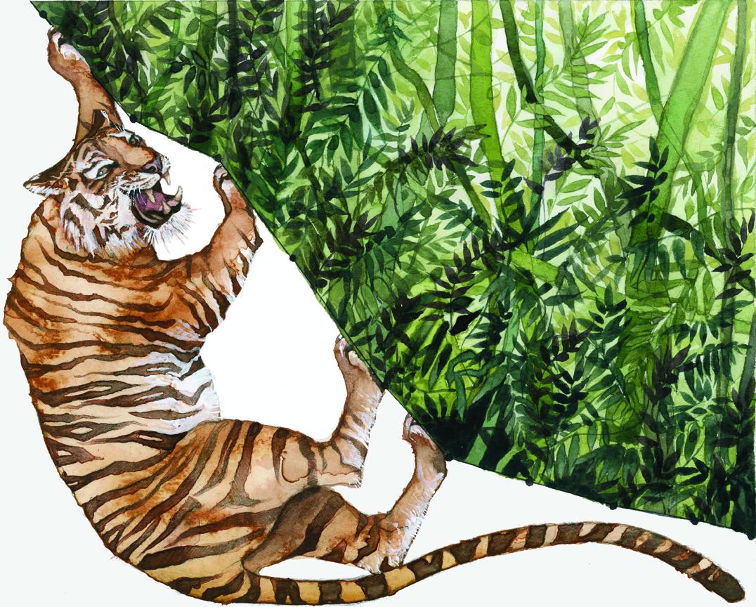 Le tigri sono in pericolo a causa della deforestazione (© Jill Pelto)