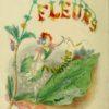 les fleurs animée 1