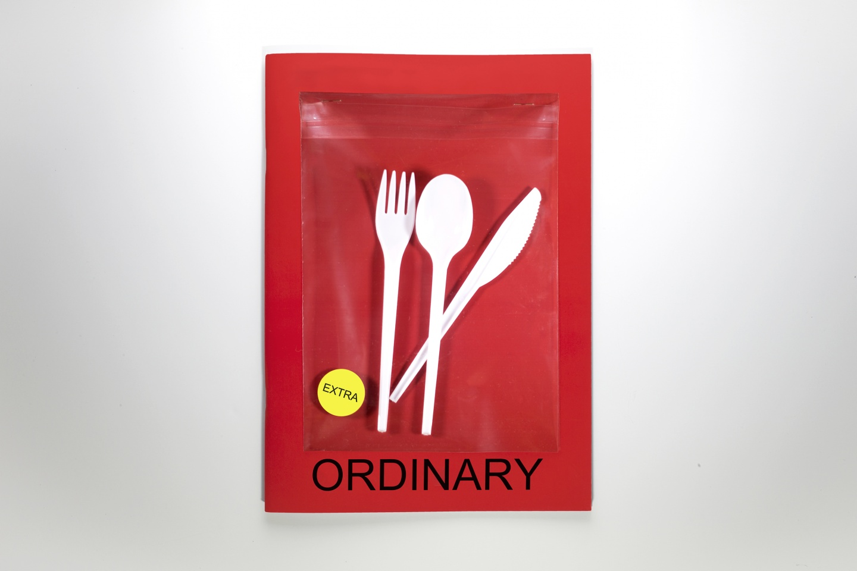 Ordinary Magazine - copertina
