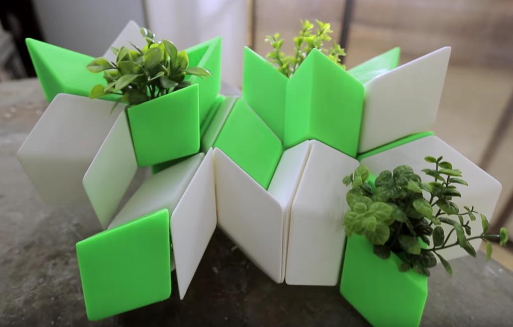 """Sara Vignoli, """"3D Elements of Nature"""""""