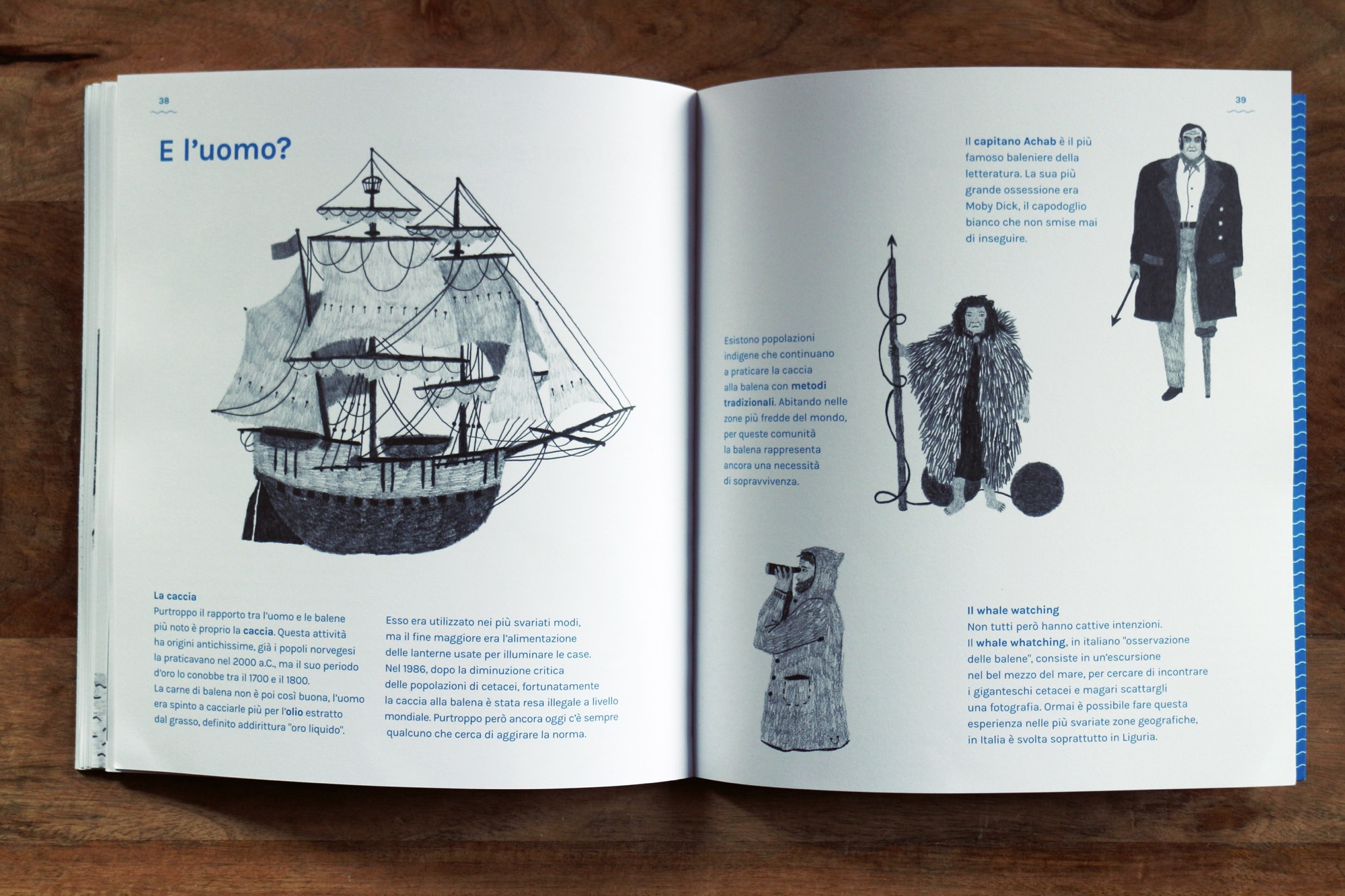 un libro sulle balene antinori 13