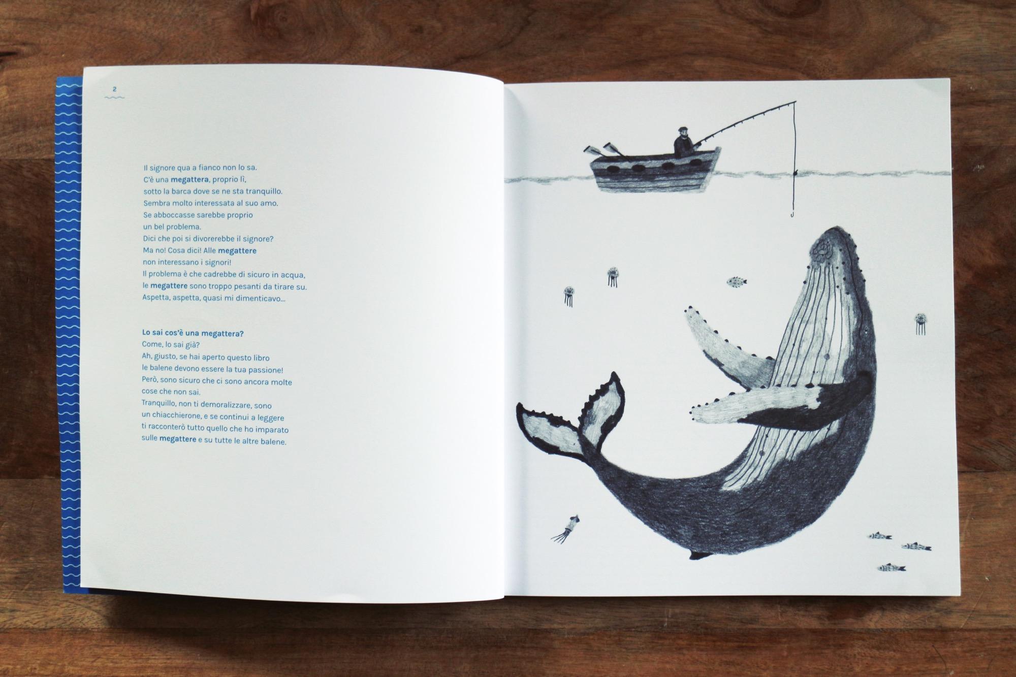 un libro sulle balene antinori 4