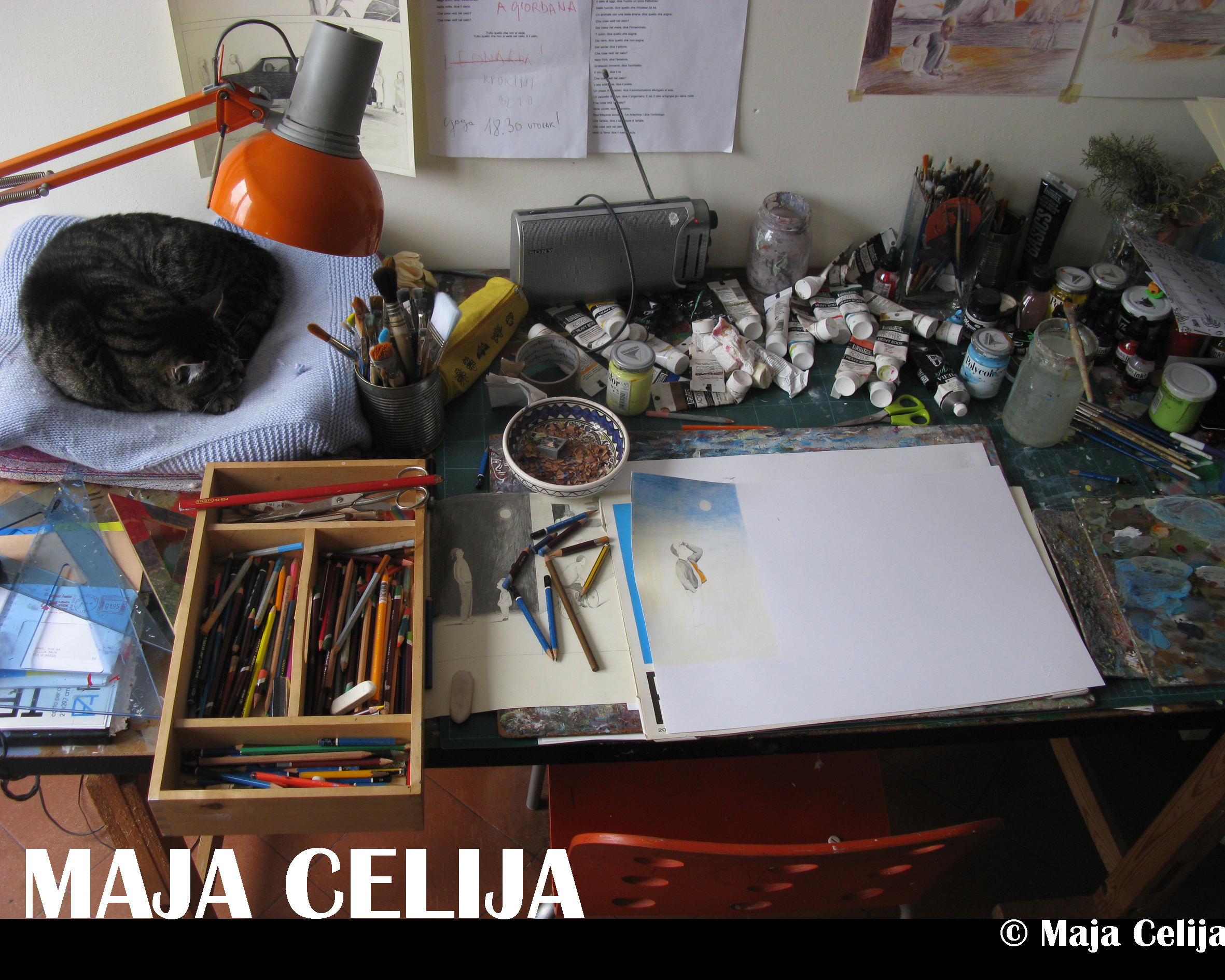 Maja Celija