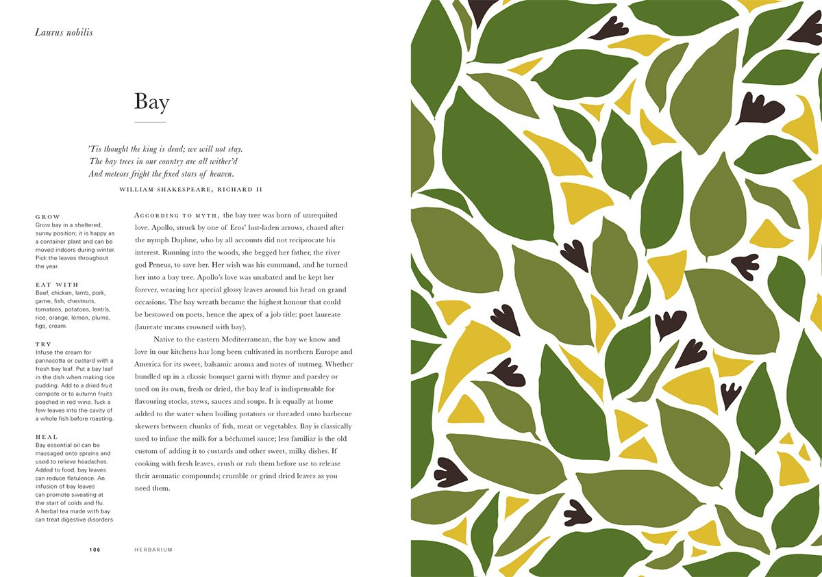 here_design_herbarium_11
