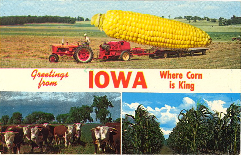 Greetings from Iowa where corn is king (courtesy Bad Postcards)