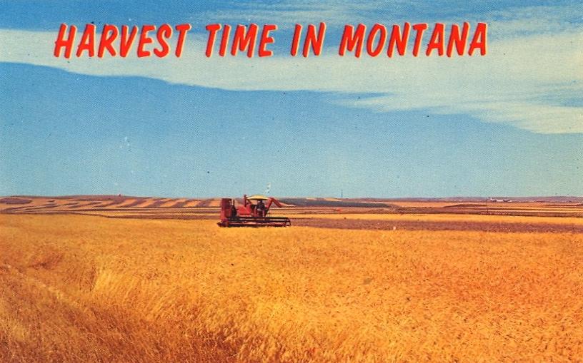 Montana (courtesy Bad Postcards)