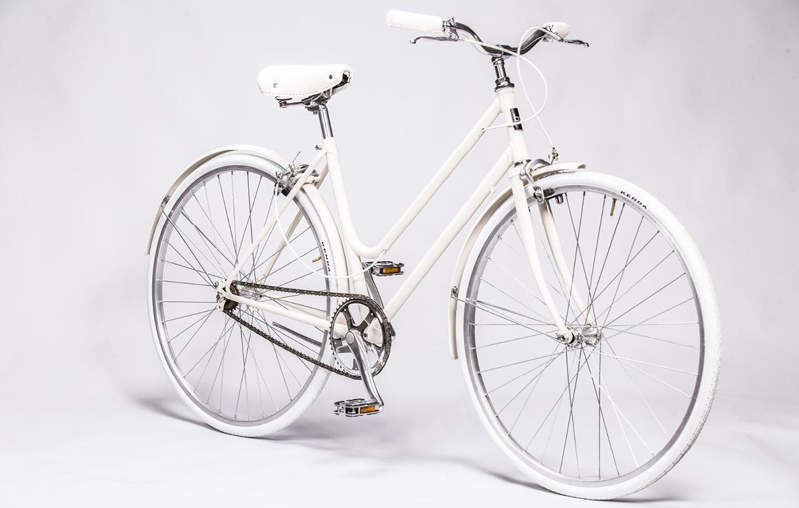 b.ciclo blight