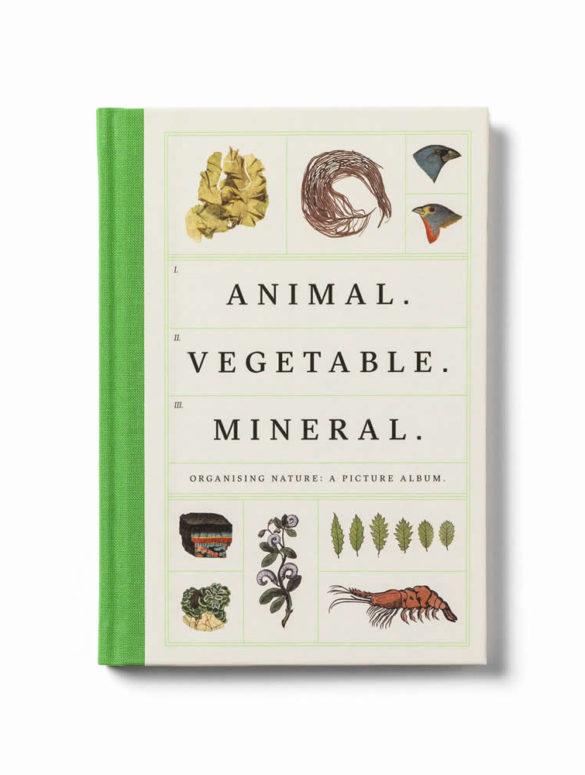 animal vegetable mineral 1