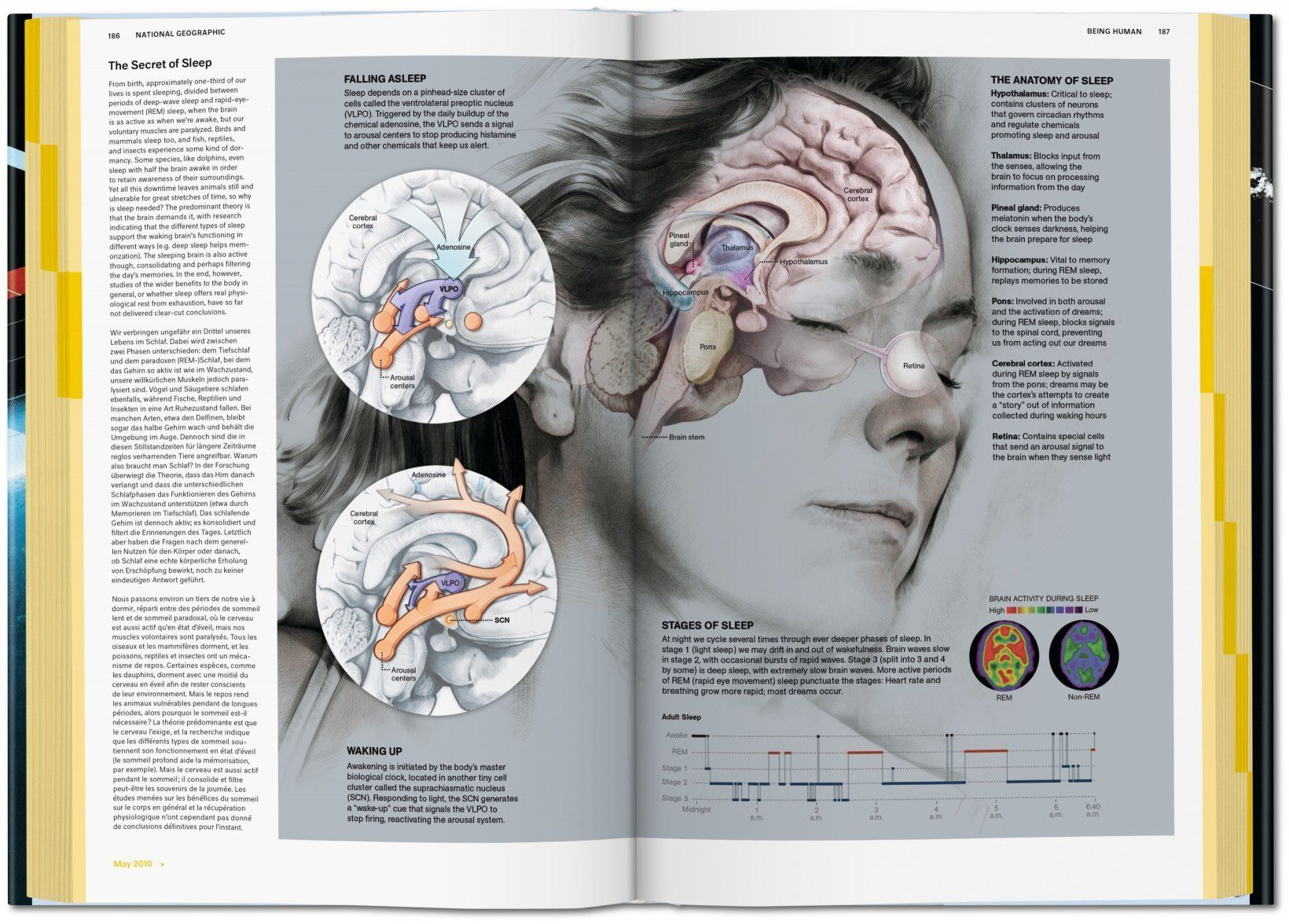 national geographic infographics 5