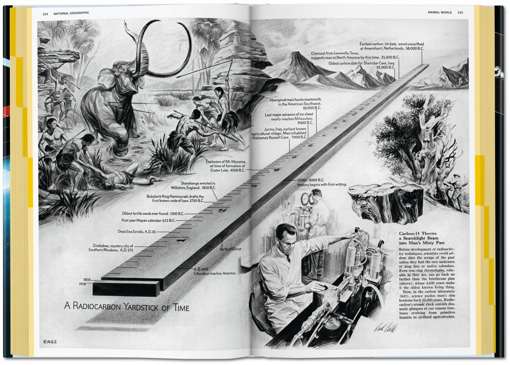 national geographic infographics 6