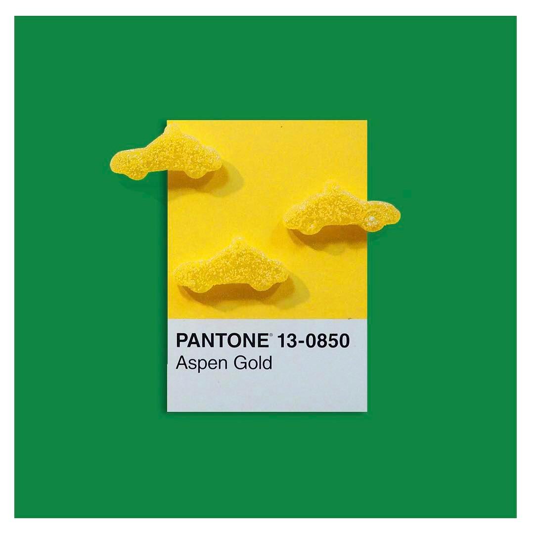 pantone irl 5