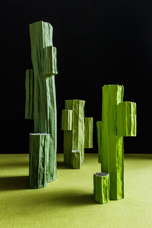 paola paronetto succulentae 2