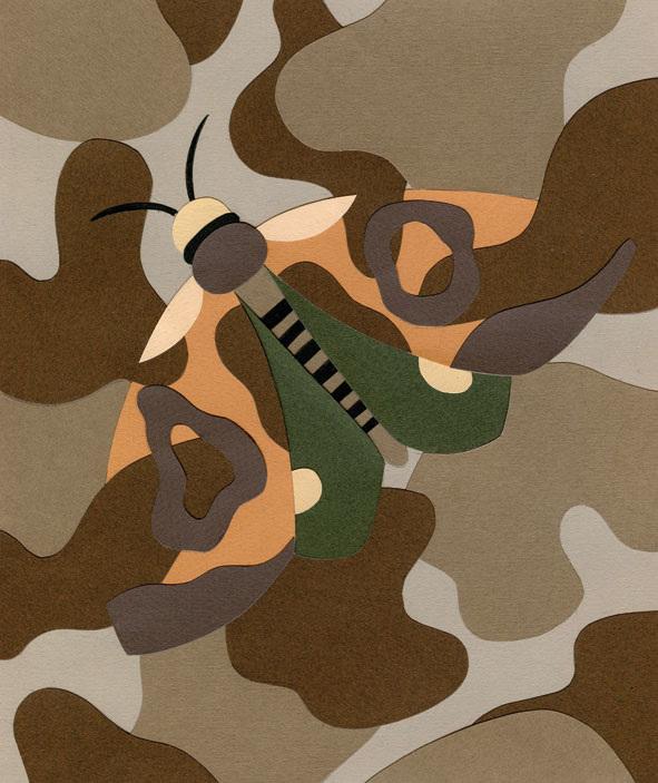 amodeo camouflage 1