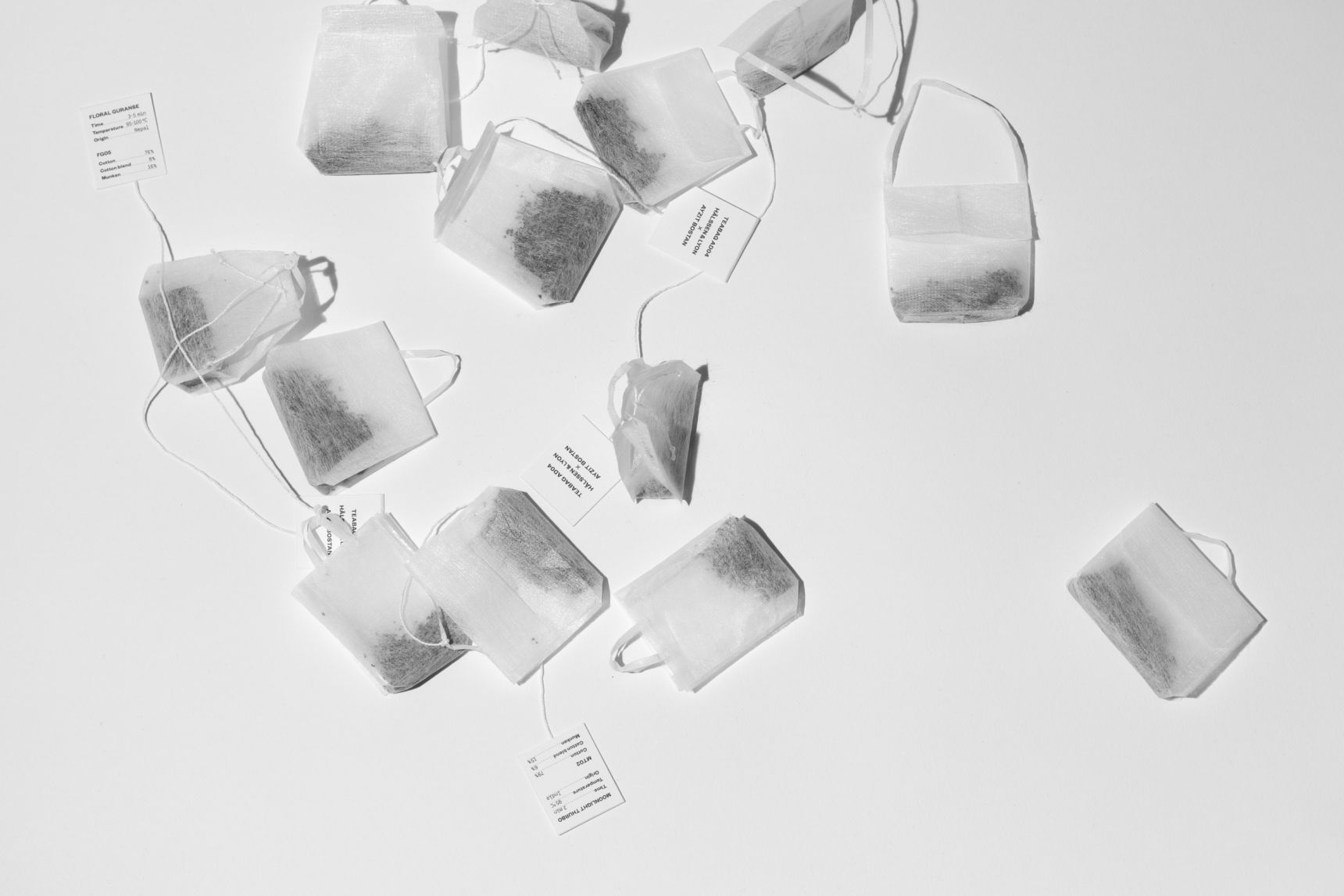 the teabag collection 12