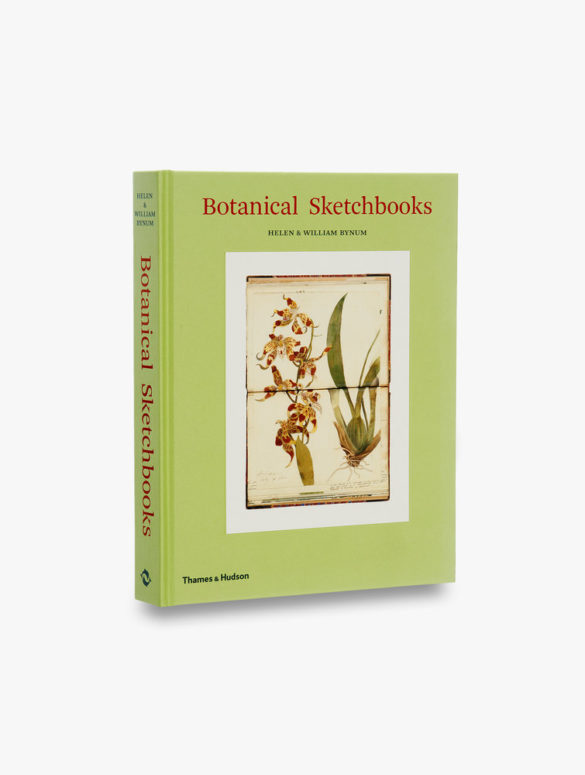 botanical sketchbooks 0