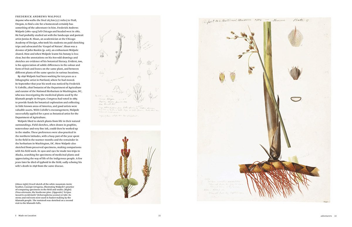 botanical sketchbooks 3