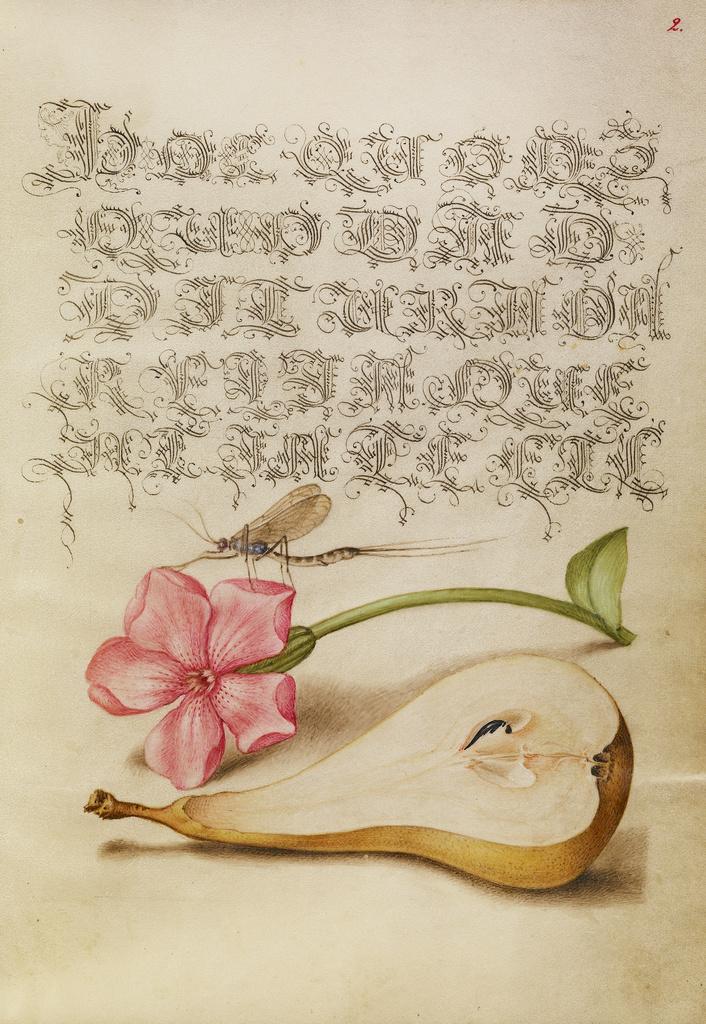 Mira calligraphiae monumenta 1