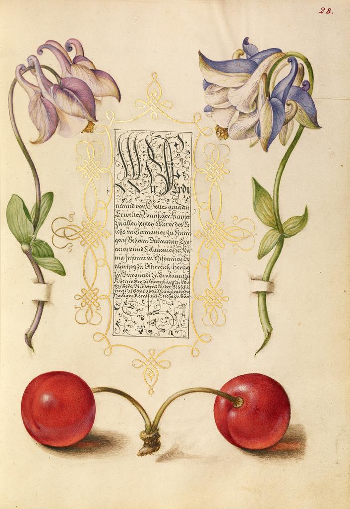 Mira calligraphiae monumenta 10