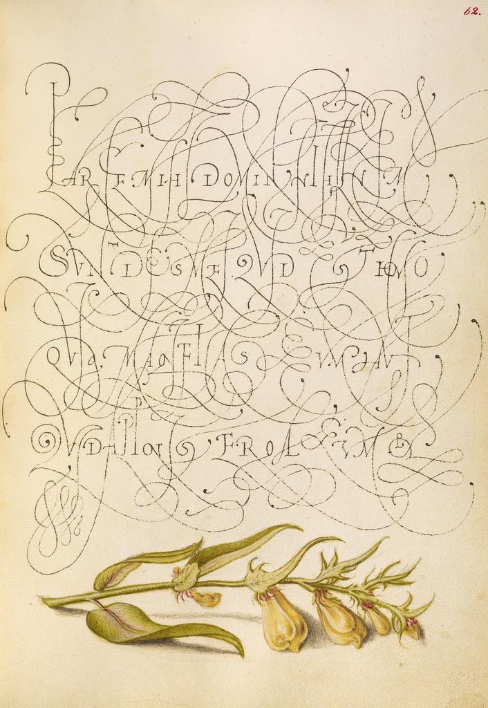 Mira calligraphiae monumenta 12