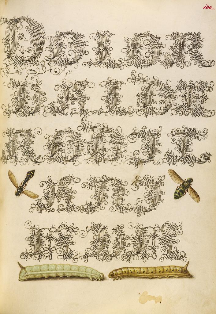 Mira calligraphiae monumenta 14
