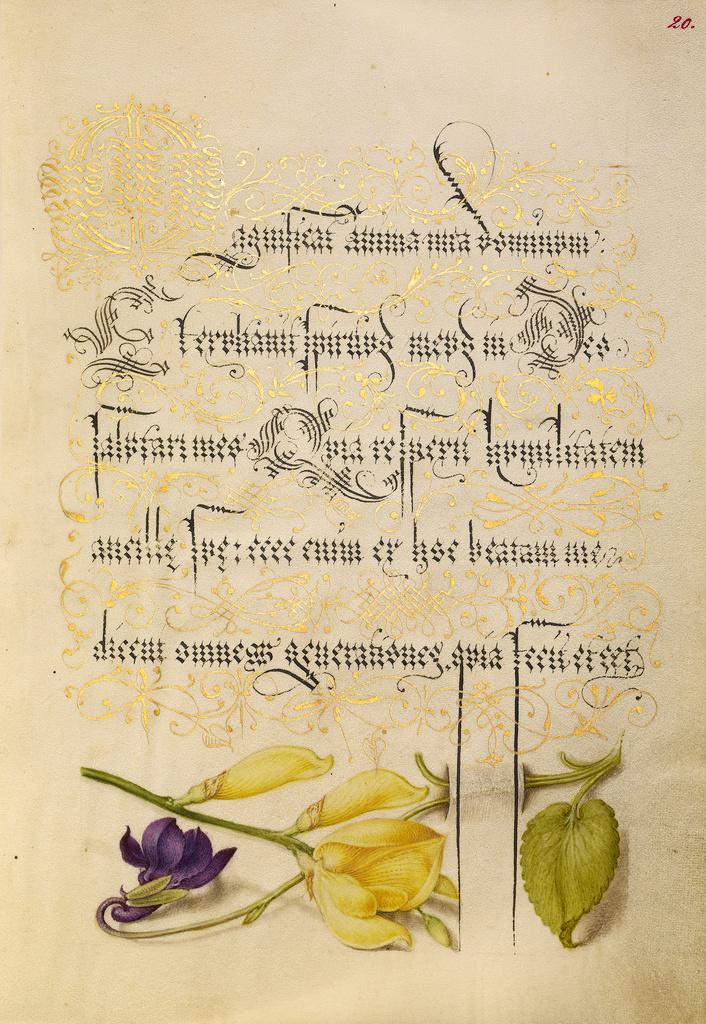 Mira calligraphiae monumenta 8