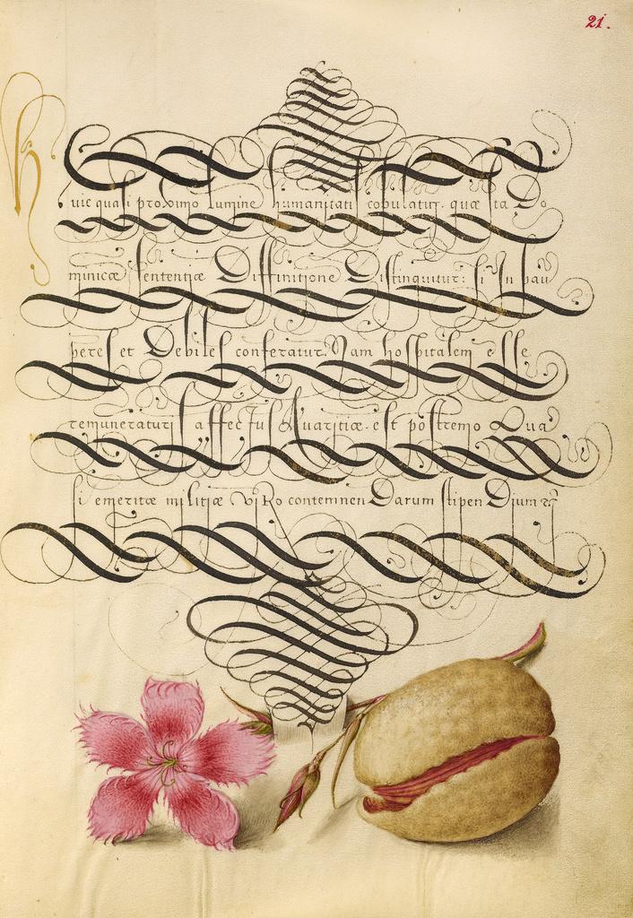 Mira calligraphiae monumenta 9