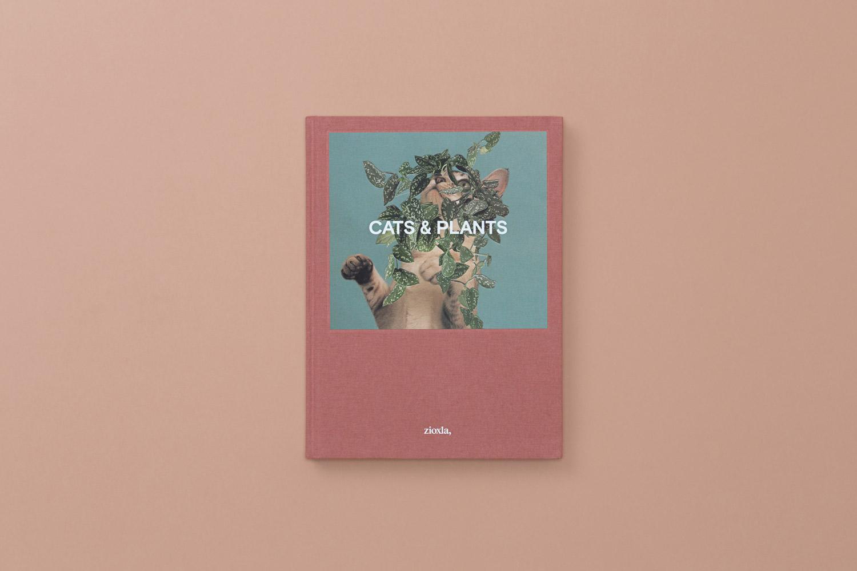 catsplants 01 copy