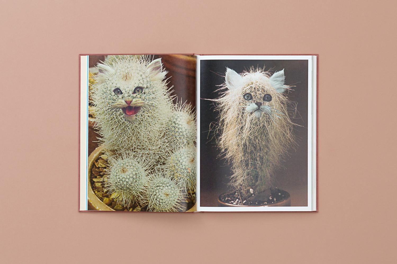 catsplants 09 copy