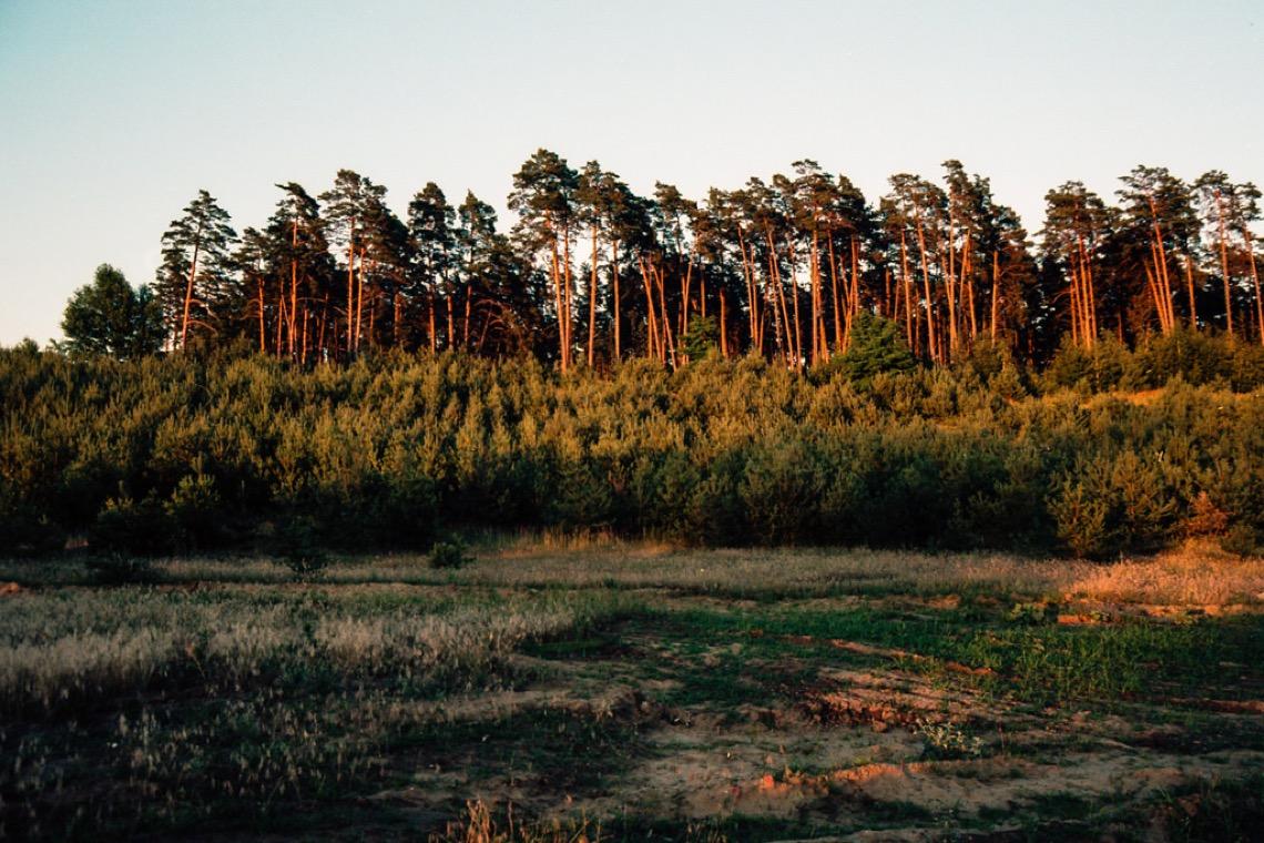 Flickr week r il giardino degli d i frizzifrizzi - Il giardino degli dei ...