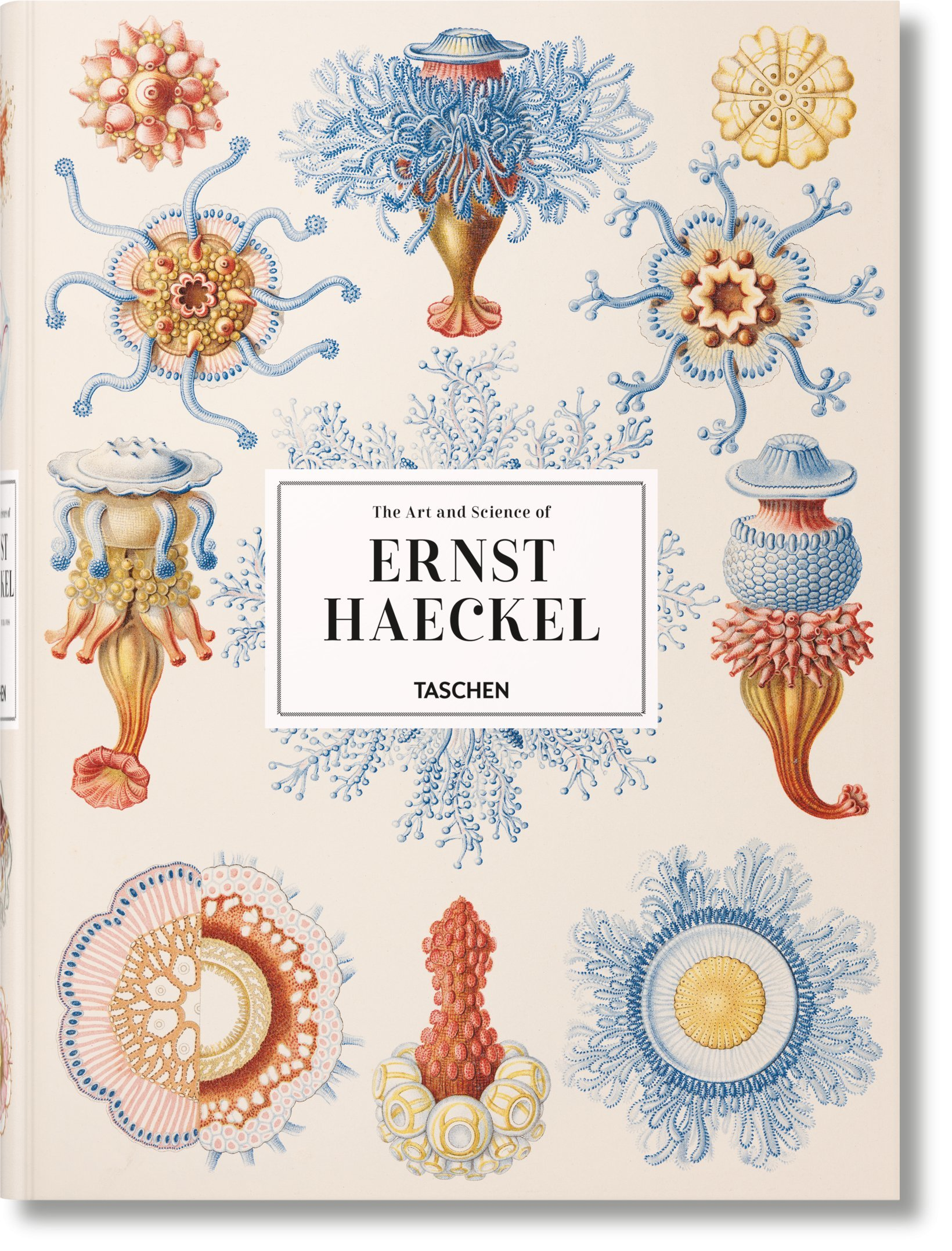 The Art and Science of Ernst Haeckel 1