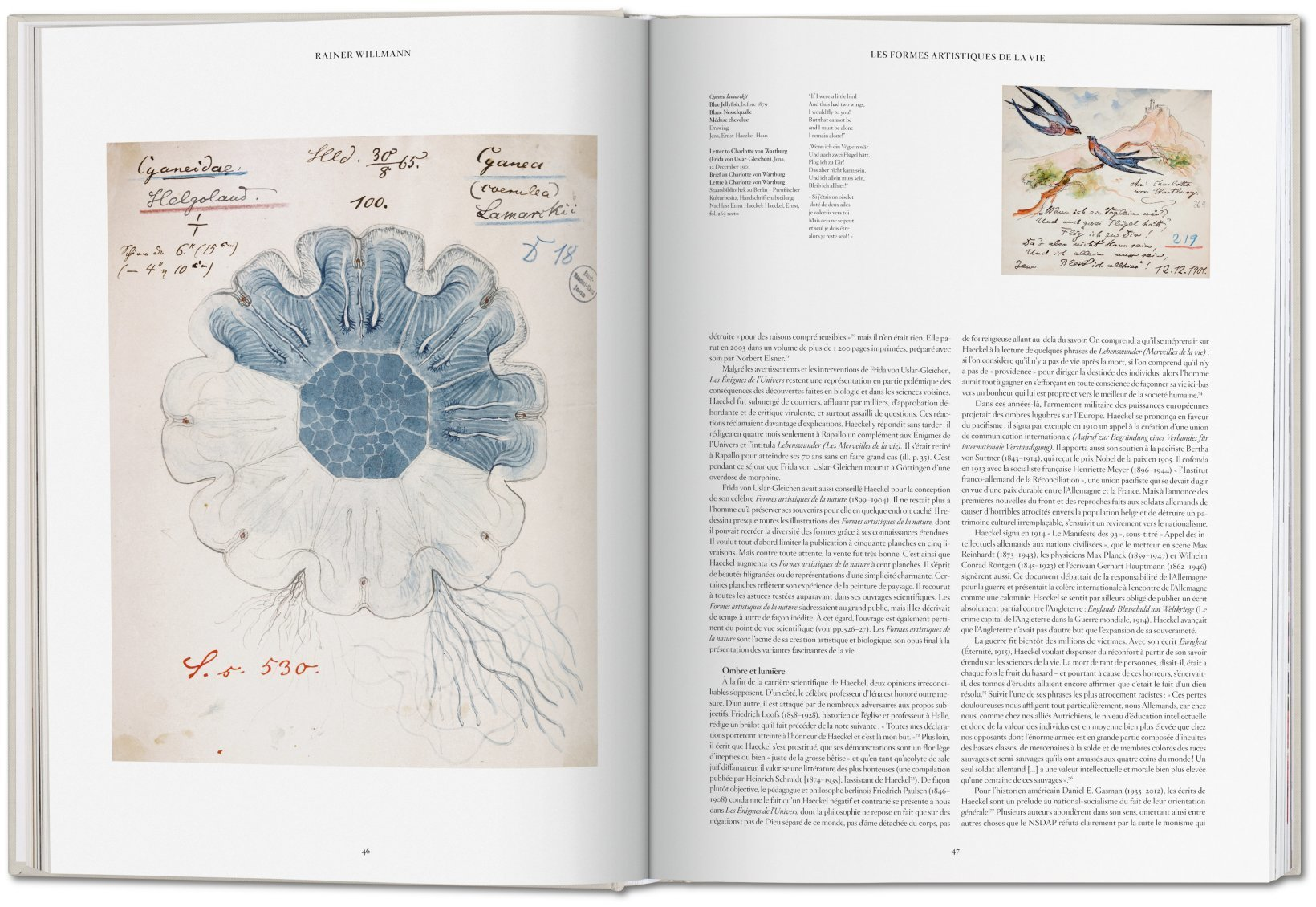 The Art and Science of Ernst Haeckel 4