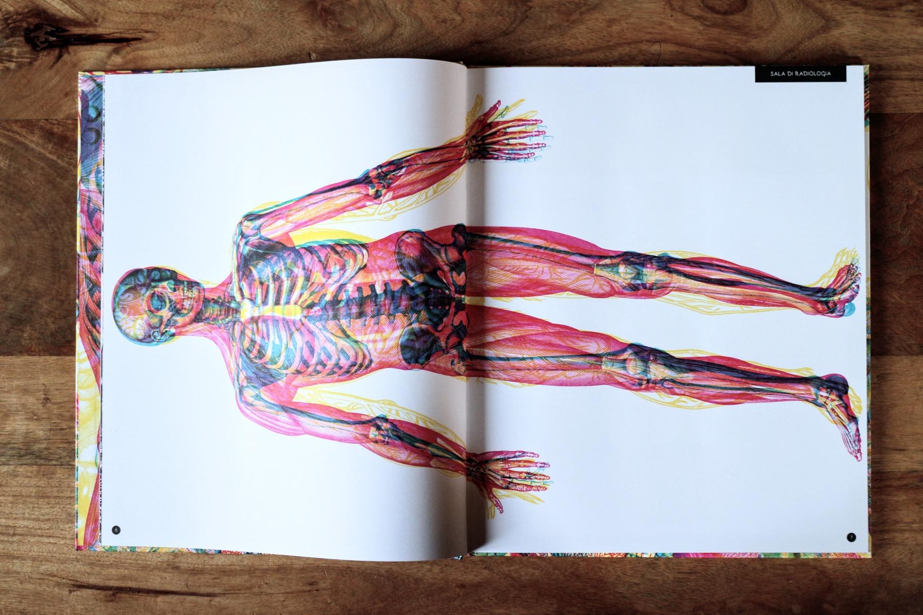 carnovsky corpo umano 6